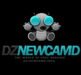 DZ Newcamd Servers