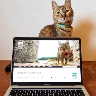 1bike1world - Katt. a képre
