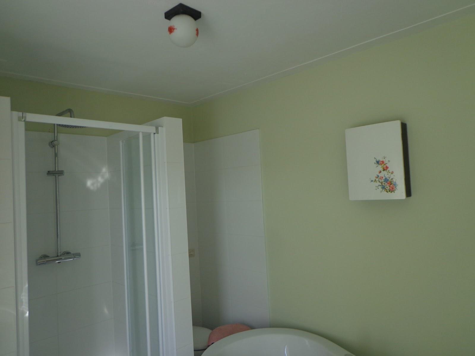 Muurverf Voor Badkamer : Badkamer van blauw naar groen retroloekie