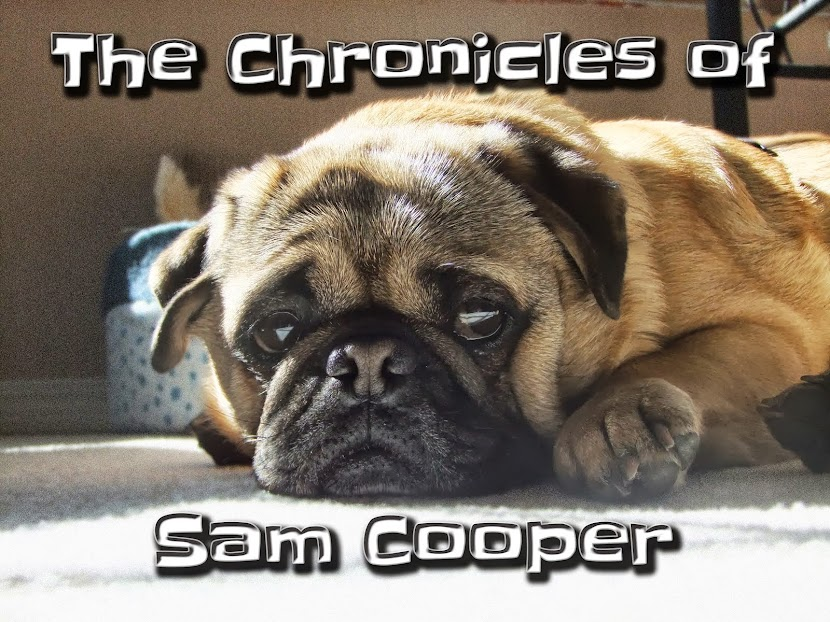 The Chronicles of Sam Cooper