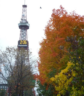 Sapporo TV tower from Odori park with autumn / fall coloured leaves on the trees. And a bird