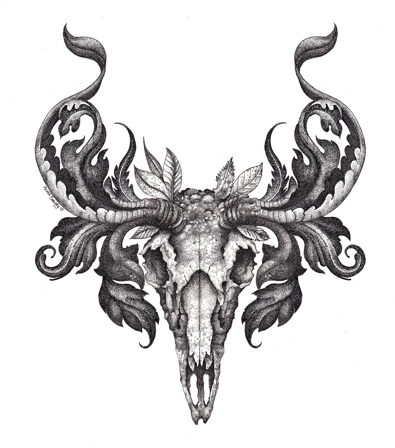 Elk skull drawing - photo#25