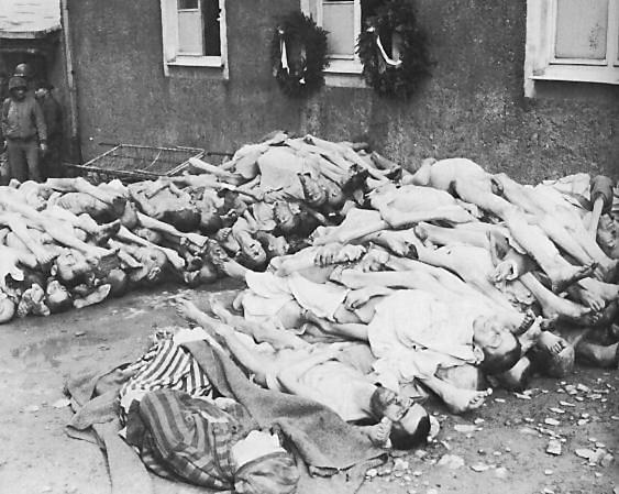 Cadáveres en campo de concentración