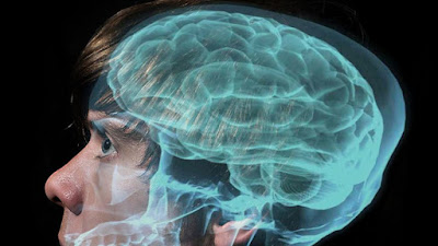 How to Make Your Brain Faster