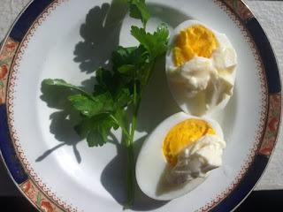 Khasiat Dan Manfaat Kuning Telur