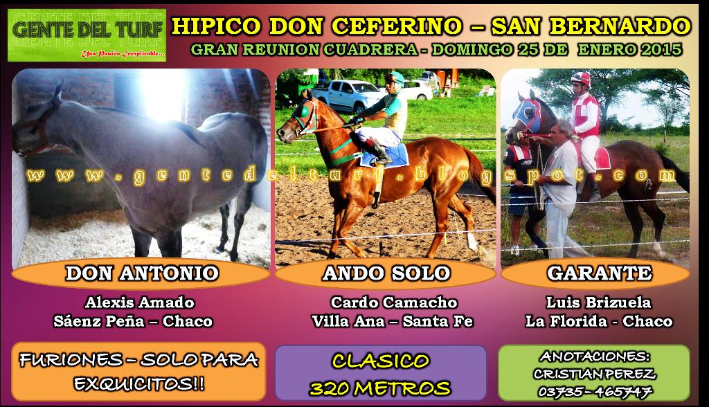 San Bernardo Muchos Mas Clasicos 25-01