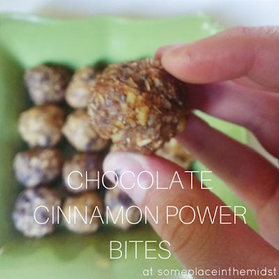 Chocolate Cinnamon Power Bites