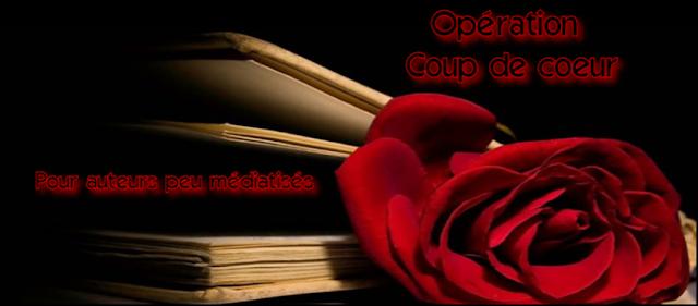 http://4.bp.blogspot.com/-5kDUoEKs2co/UY0s5Oo-3XI/AAAAAAAAGjk/mJGE0o2Qd8Y/s640/Op%C3%A9ration+coup+de+coeur+pour+auteur+peu+m%C3%A9diatis%C3%A9s+-+2013.png