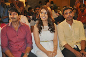 Jil movie success meet-thumbnail-12