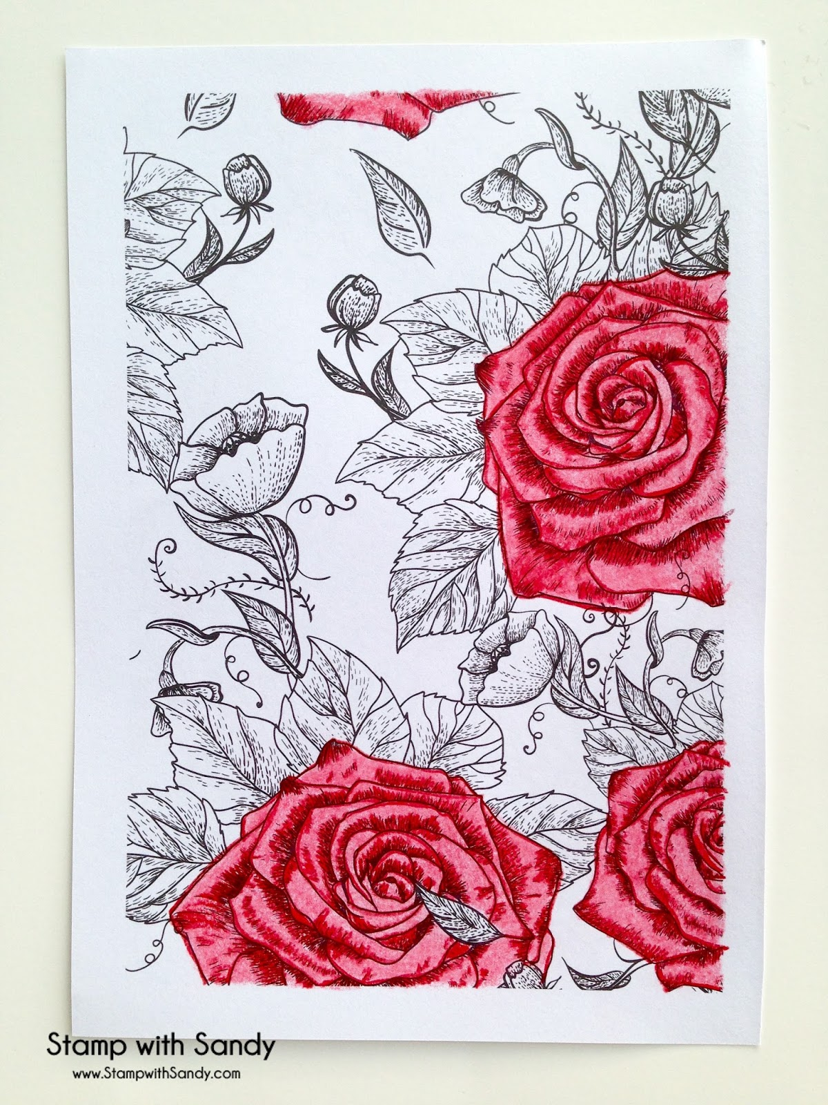 Stamp with Sandy: Adult Coloring Books
