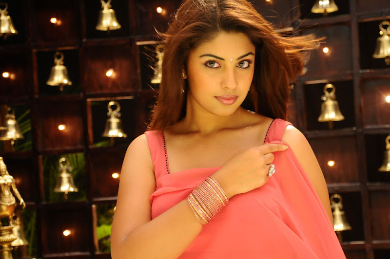 Richa Gangopadhyay Stills Gallery hot photos