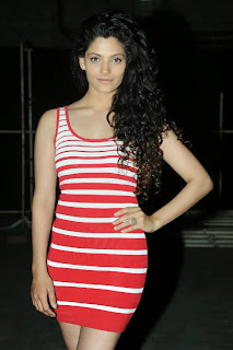 Actress Saiyami Kher  Pictures at Rey Movie A to Z Look Launch  0028