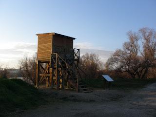 Observatorio de aves ornitológico desembocadura Gállego Ebro Zaragoza