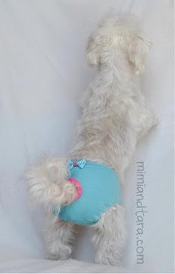 panty for dog pattern