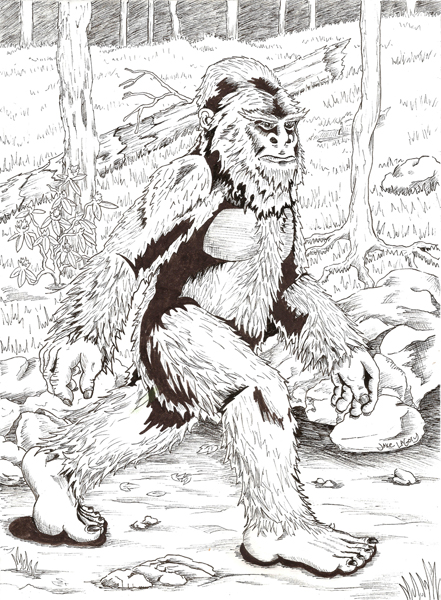 Jake Lagory Illustrator Cryptozoology Coloring Book Bigfoot Coloring Pages