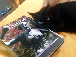 Cats agree: Read the FY Guide