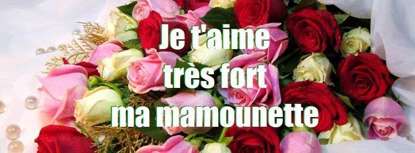 Photo de couverture facebook je t'aime maman