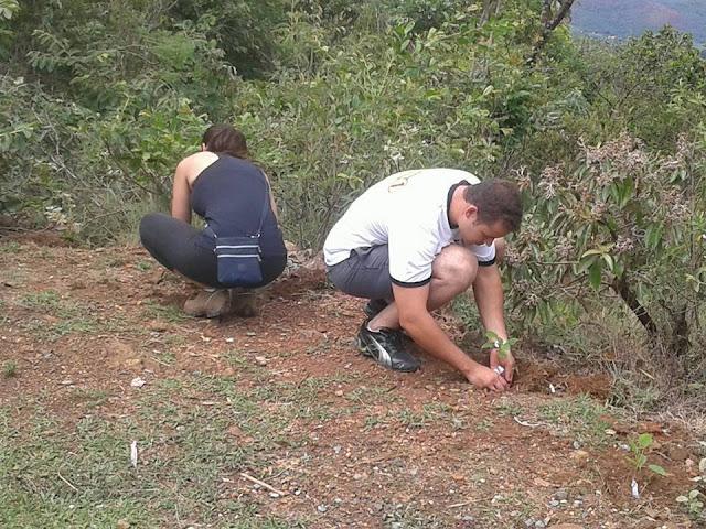 plantando uma arvore projeto serra gandarela