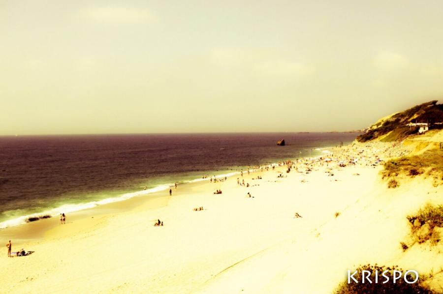 Playa de Bidart desde la duna