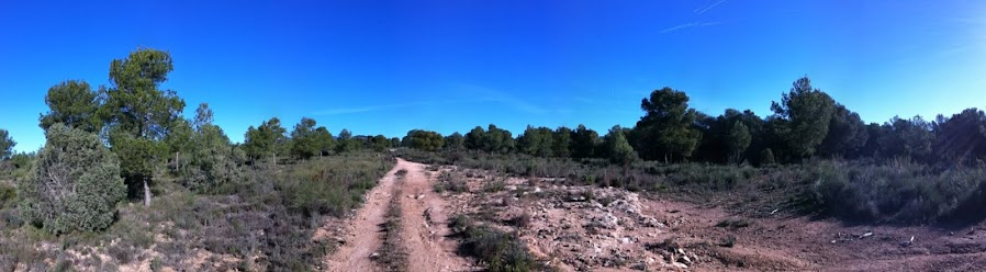 Caminar por la Calderona