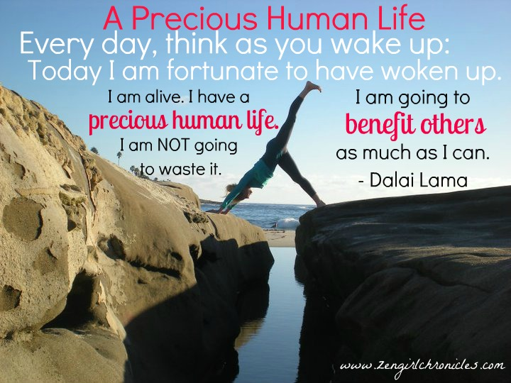 everyday think as you wake up today i am fortunate to be alive i have a precious human life i am not Everyday think as you wake up, today i am fortunate to be alive i have a precious human life i'm not going to waste it dalai lama.