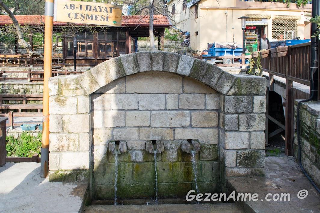 ab-ı hayat çeşmesi Musa Ağacı, Hıdırbey köyü Hatay