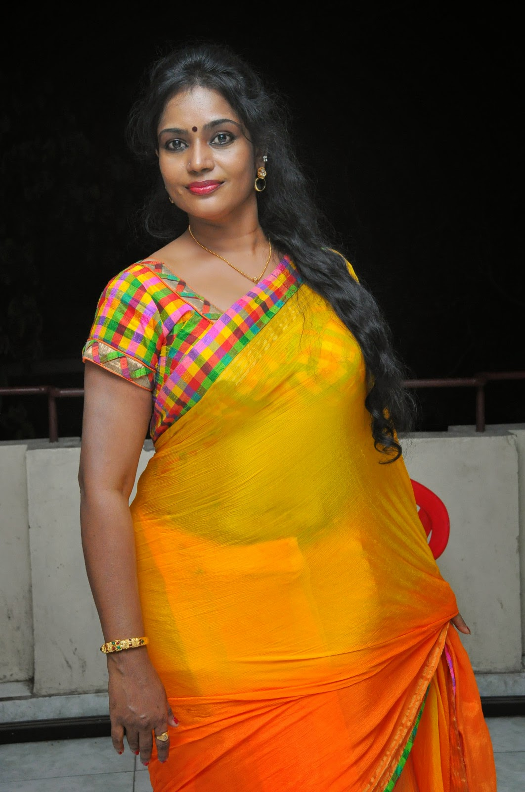 Jayavani glam pics in saree-HQ-Photo-15