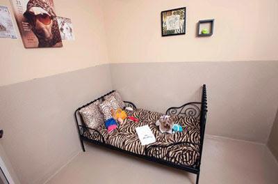 巴克利豪華寵物酒店 寵物:寵物也有上流社會? 豪華寵物酒店貴氣逼人