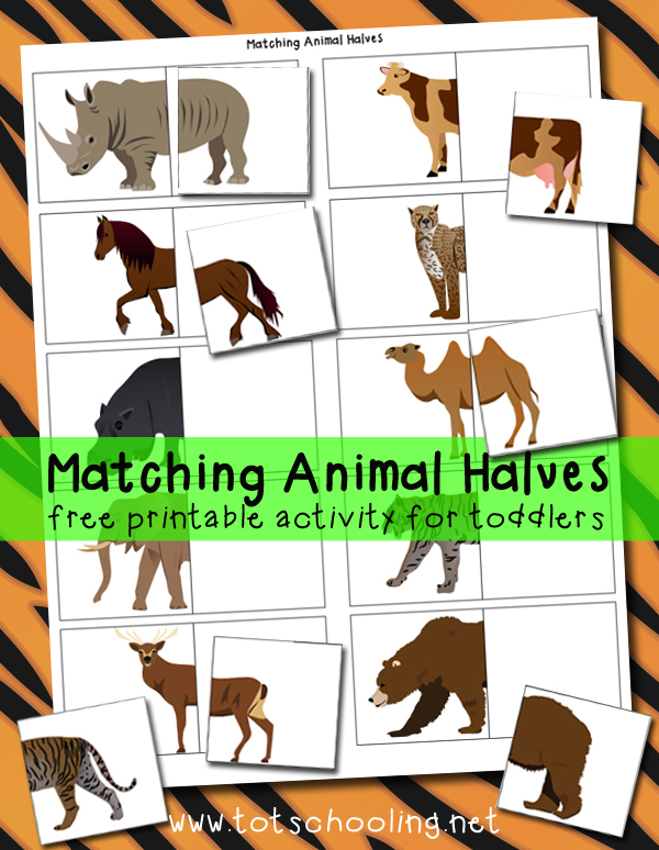 Matching Animal Halves Printable Activity | Totschooling - Toddler ...