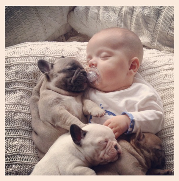 Cute Photos of Baby with Puppies
