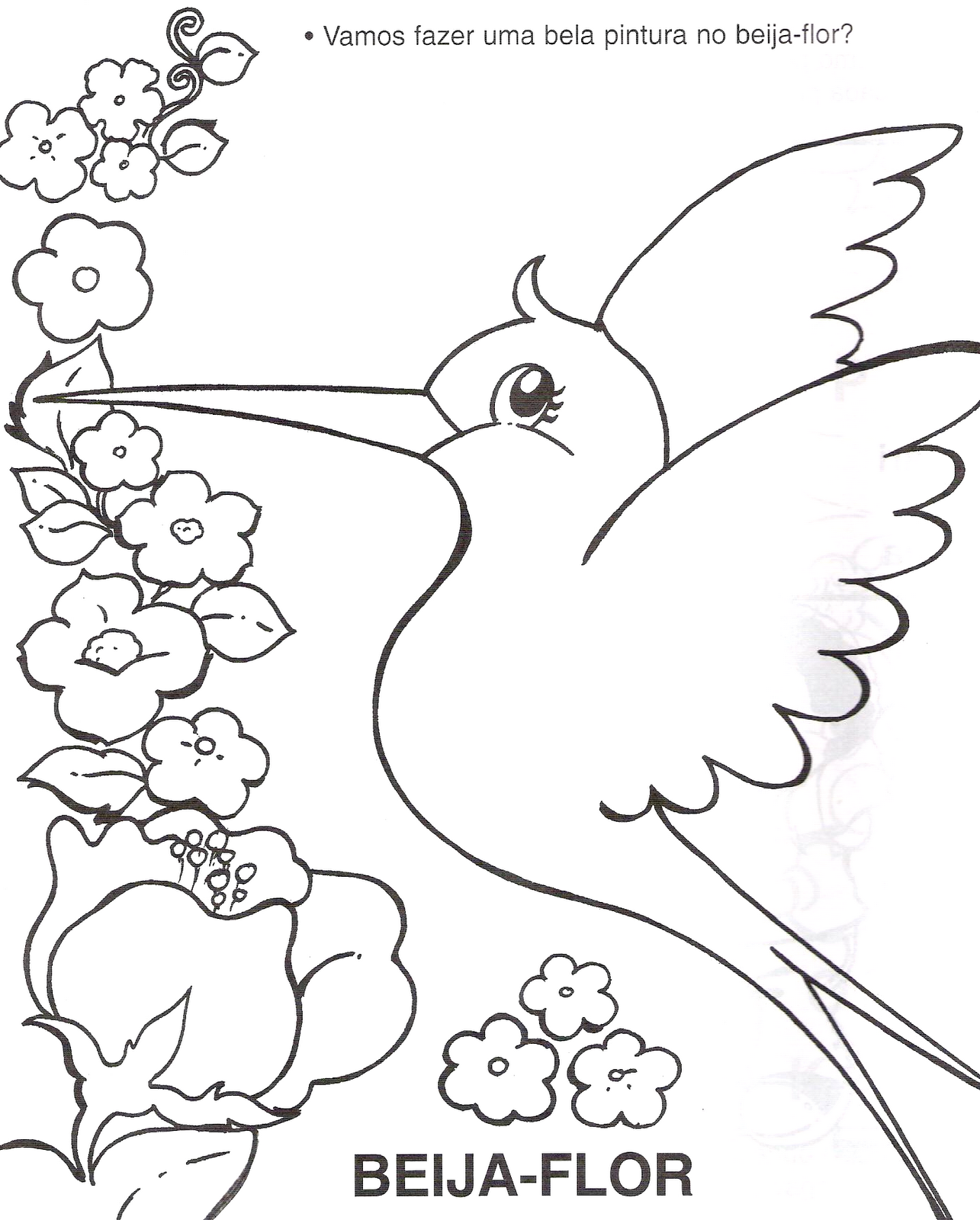 educação infantil vamos pintar o beija flor
