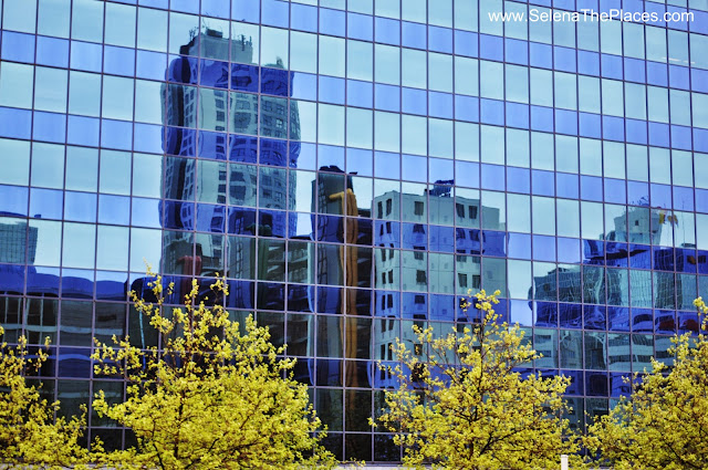 Reflections in Rotterdam