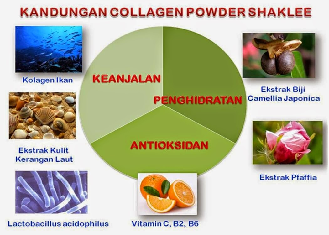 7 Bahan Utama Shaklee Collagen Powder