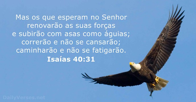 Meditação - Isaías 40:31