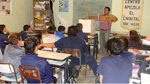 COMENZARON LAS CLASES DE APICULTURA EN EL CAMPO EXPERIMENTAL