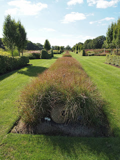 Sussex Prairies Garden. Amazing flowers and good example of garden design. Straight lines through the landscape give structure in the mass of planting