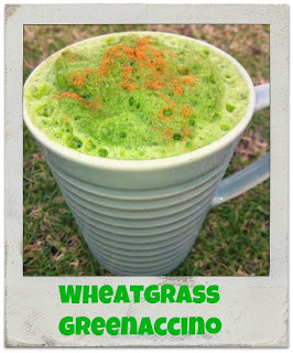 wheatgrass, benefits of wheatgrass, wheatgrass recipe