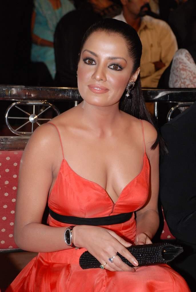 Actresses Photos Bollywood Actress Celina Jaitley Red