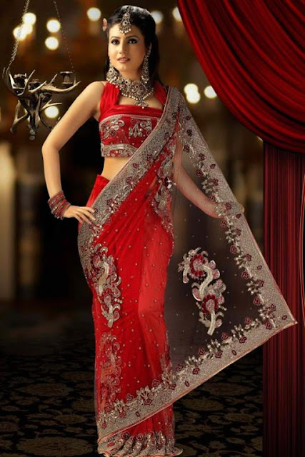 Net Embroidered Bridal Saree Design