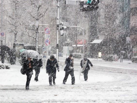 Salji Pertama Bakal Turun di Malaysia?