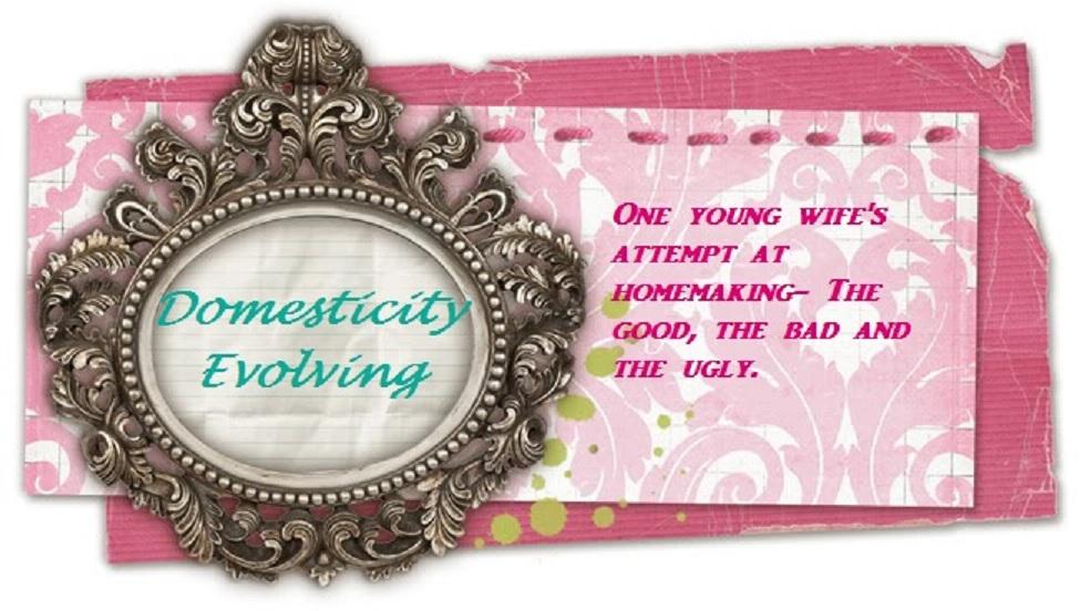 Domesticity Evolving