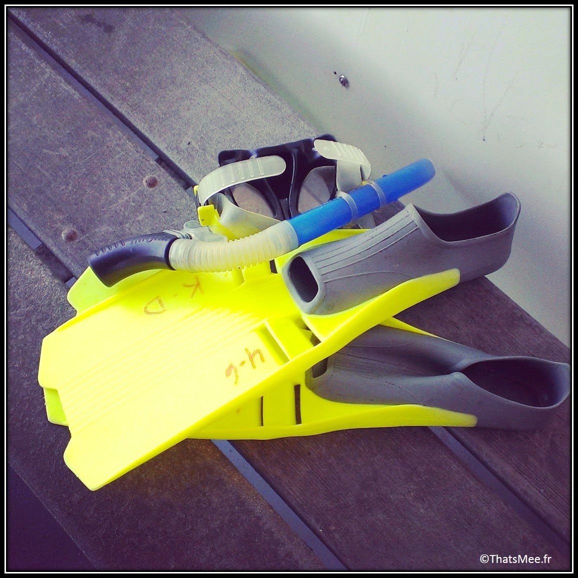 Miami The Keys Key Largo snorkeling key divers palme jaune fluo masque tuba
