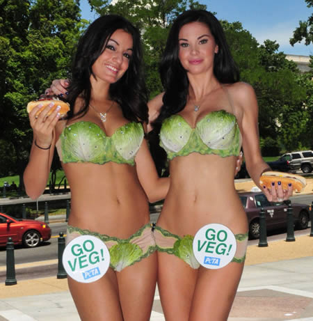 Sexiest and Craziest Bikinis Lettuce Bikini