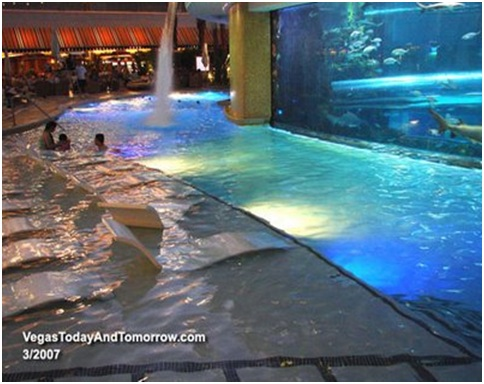 LAS VEGAS RARE SWIMMING POOLS UNCOMMON POOLS