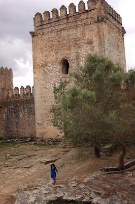 Castillo Fortaleza desconocido