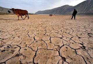 """PR confrontado com falta de água no centro do país, problema com """"barbas brancas"""""""
