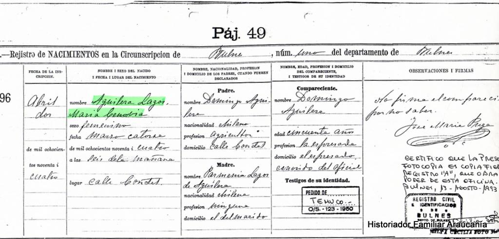 Historia familiar en el Sur de Chile