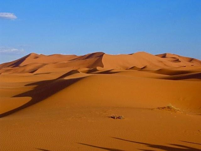 The Desert of Islamization