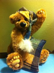 Beddy Teddy