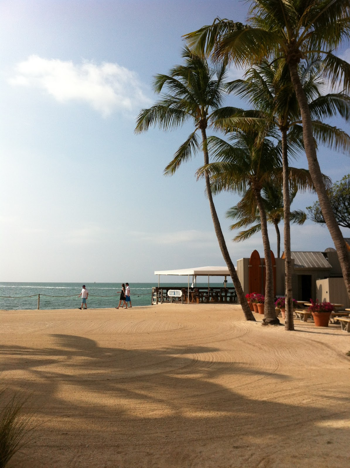 Islamorada Oceanside Restaurants 2